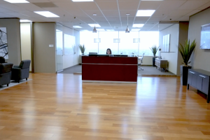 3010 interior receptionist desk